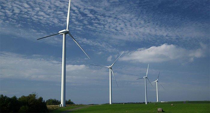 Hệ thống camera thông minh mới ngăn cánh turbine gió va chạm với chim