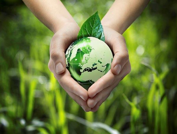 Các nhà sản xuất thuốc trừ sâu hay thuốc diệt cỏ phải tìm ra phương pháp tạo ra loại thuốc thân thiện với môi trường